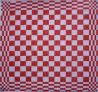 keukendoek/handdoek - rood geblokt - 50 x 50 cm